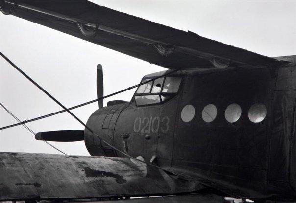 Reid_Yalom_aircraft